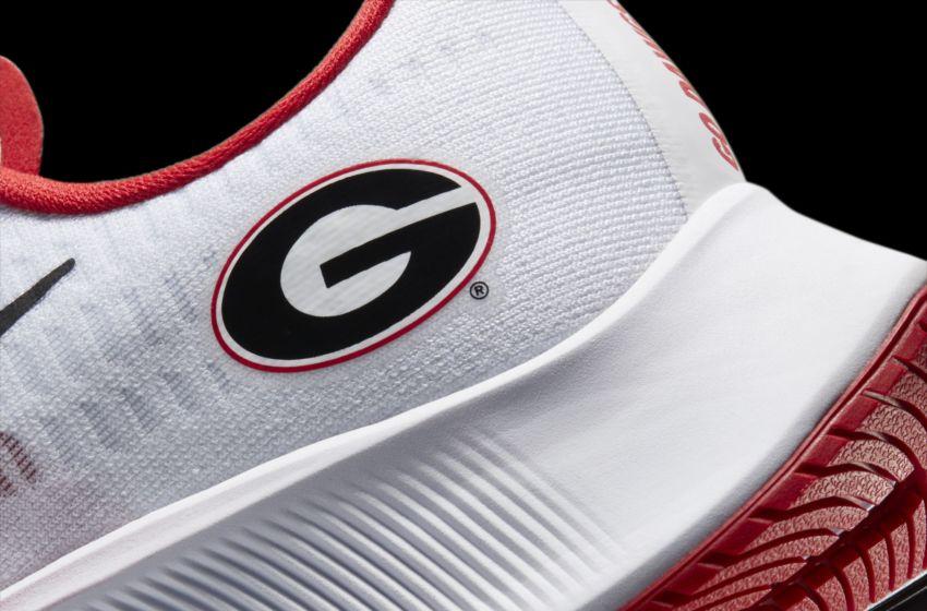 The Nike Air Zoom Pegasus 37 Georgia